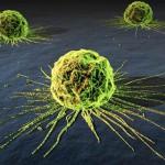cancer-cells1