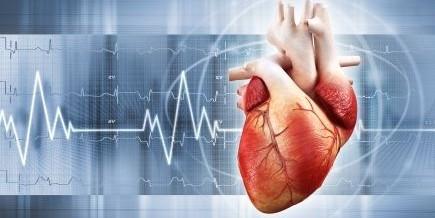 Тестостерон — лекарство для сердца