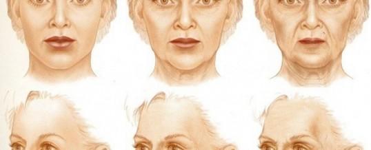 Адаптационно-регуляторная теория старения: старение — это генетическая программа