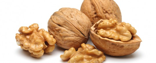 Грецкие орехи — защита от рак простаты